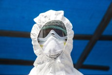 Ebola outbreaks linked to forest loss