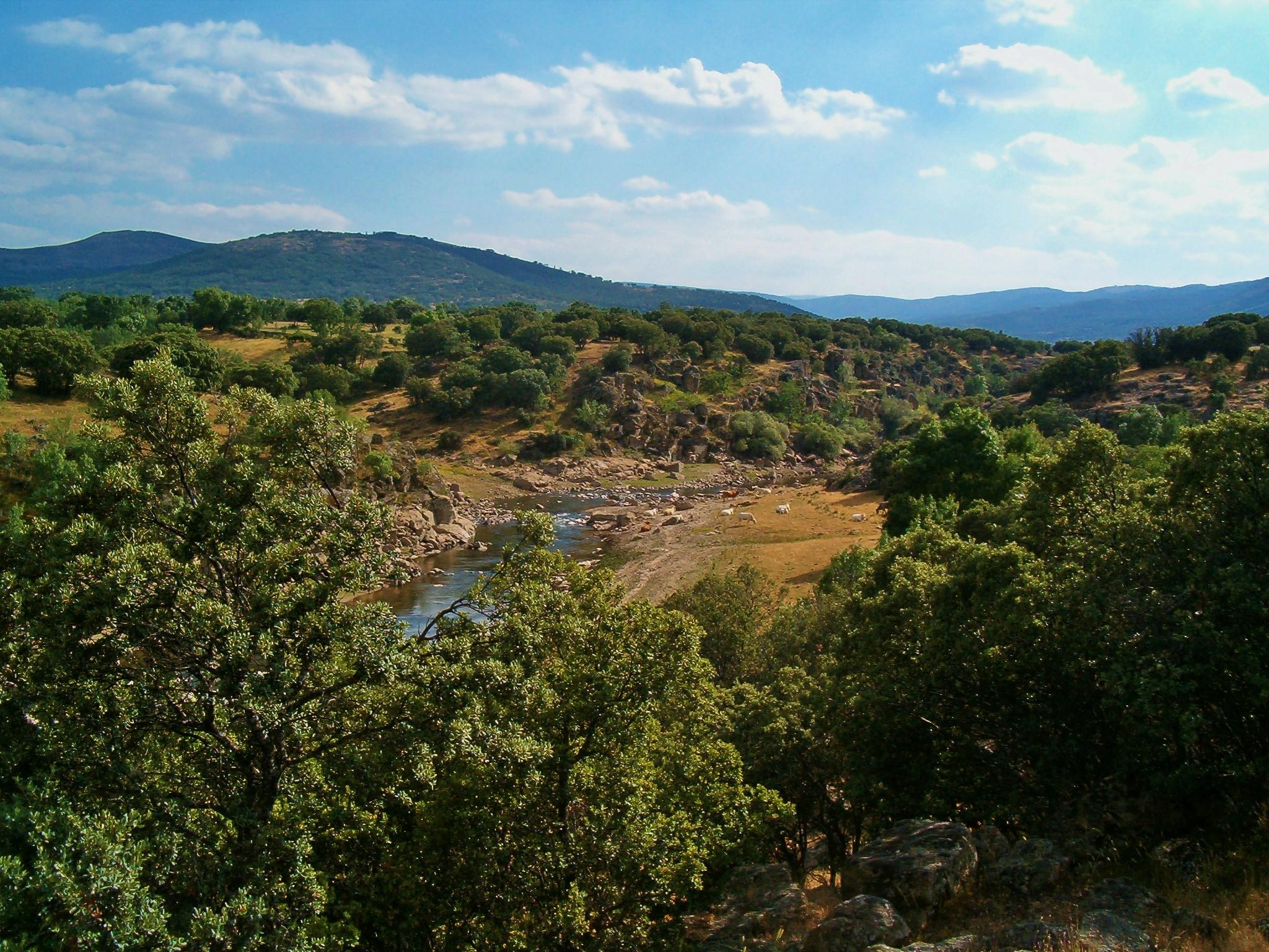 Hacia una visión ecorregional para la restauración de paisajes en América Latina