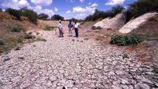 La urgencia de un plan nacional de restauración para México