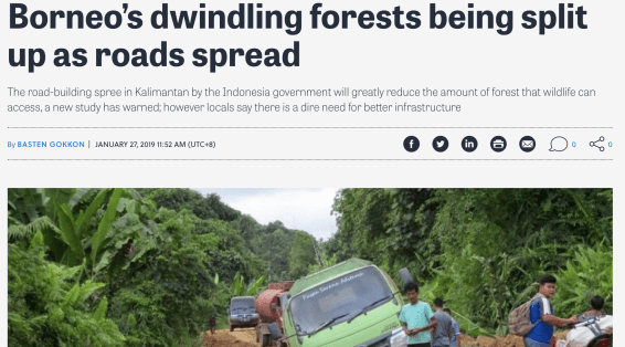 Infrastructure in Kalimantan will risk wildlife, but the local population needs it