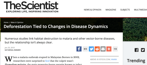 Scientists find a link between deforestation and vector-borne diseases, malaria in Malaysia