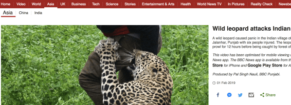 Leopard attacks villagers