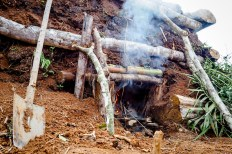 Permalink to: Women's place in Africa's growing charcoal sector
