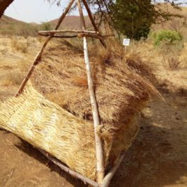 Straw piled on a wooden frame made of slender tree trunks and branches to be weighed