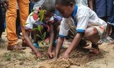 Permalink to: Why education is essential to the future of forests