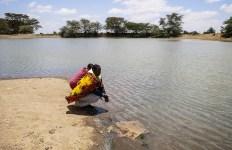 Permalink to: Indigenous-led community efforts redefine forest management in Kenya