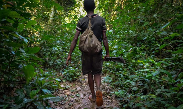 A man walks on a path in the forest holding a rifle by his side
