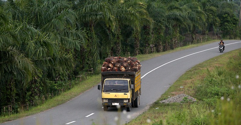 A truck laden with fruit drives down a highway