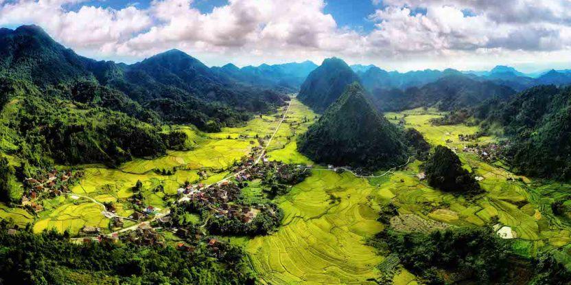 A lush green landscape in Vietnam