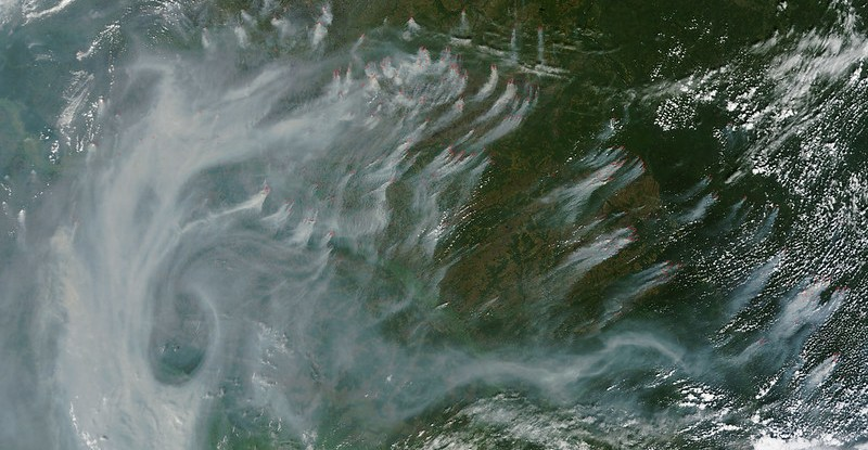 Satellite image shows smoke drifting in the atmosphere