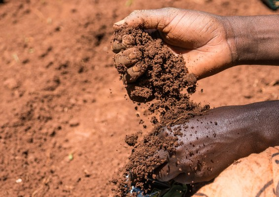 A close up of hands holding soil
