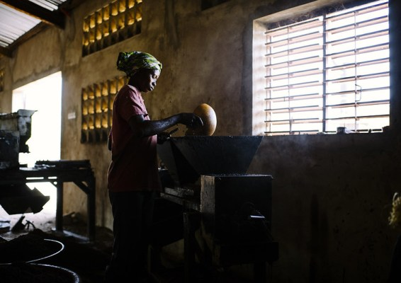 A woman works on shea butter processing