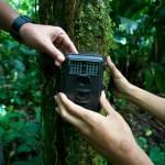 A camera trap in Gunung Halimun-Salak National Park, Indonesia, to monitor biodiversity. Photo: Mokhamad Edliadi/CIFOR