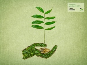 Sustainable agricultural yields. Think Forests Wallpaper/CIFOR