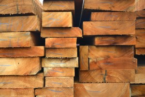 Local people look to timber certification. Photo: Nathan Russell/CIAT