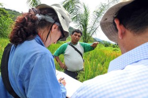 Mainstreaming gender should be about more than just ticking a box. Photo: Neil Palmer/CIAT