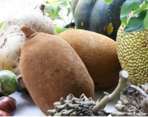 The Copoazu fruit. Photo: INIAP
