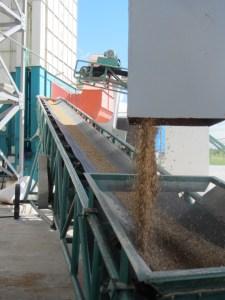 A rice processing plant in Zambezia province. Photo: George Schoneveld