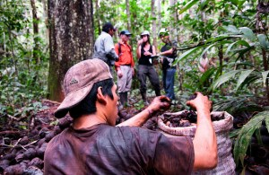 Madre de Dios in the Peruvian Amazon is the third location of the study. Photo: CIFOR