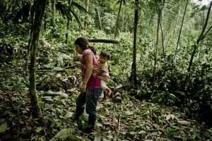 Photo by Tomas Munita for Center for International Forestry Research (CIFOR).