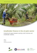 Smallholder finance in the oil palm sector: Analyzing the gaps between existing credit schemes and smallholder realities