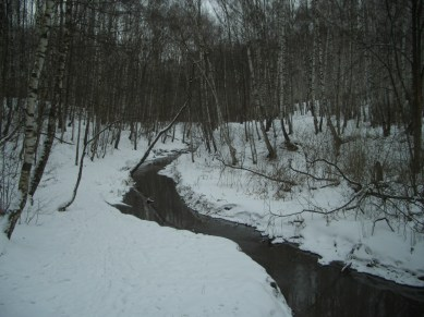 Bitsa_River_in_Yasenevo_Forest_Park