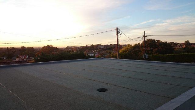 Garage Roof.