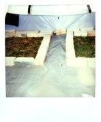Backyard_archeology_MitraCline4