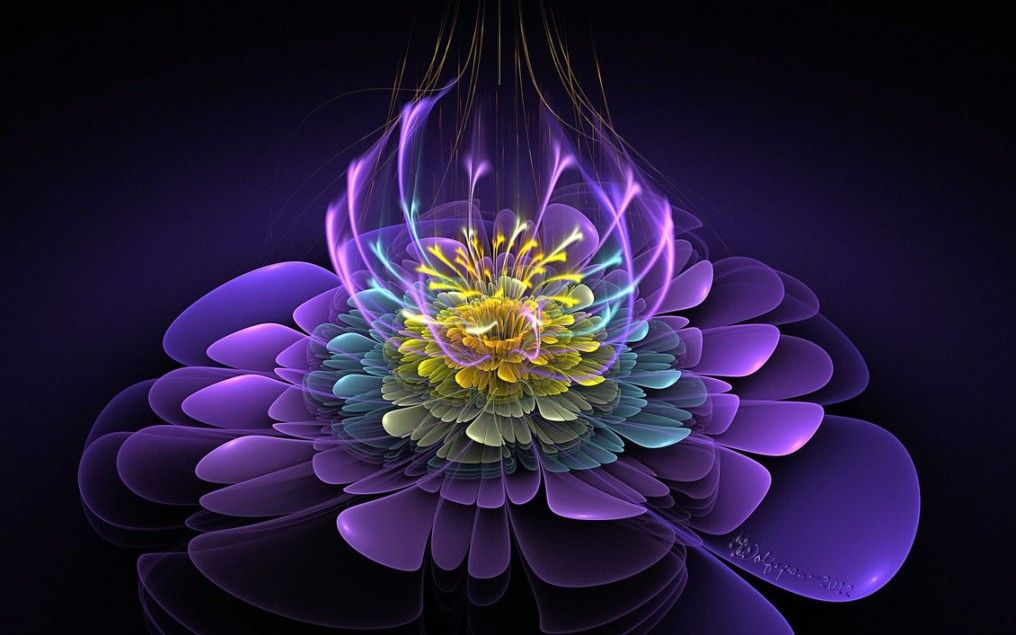 Calm Your Fears With Flowers Forever Conscious
