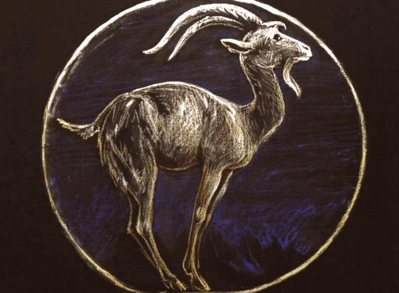 january new moon astrology capricorn