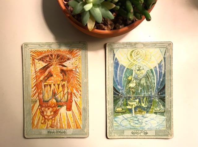 tarot reading for the week