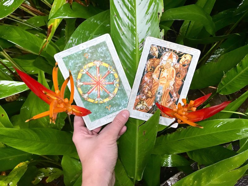 Nikki's Weekly Tarot Reading: May 28-June 3, 2018 - Forever Conscious