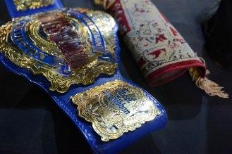 Wrestlepalooza010815-216