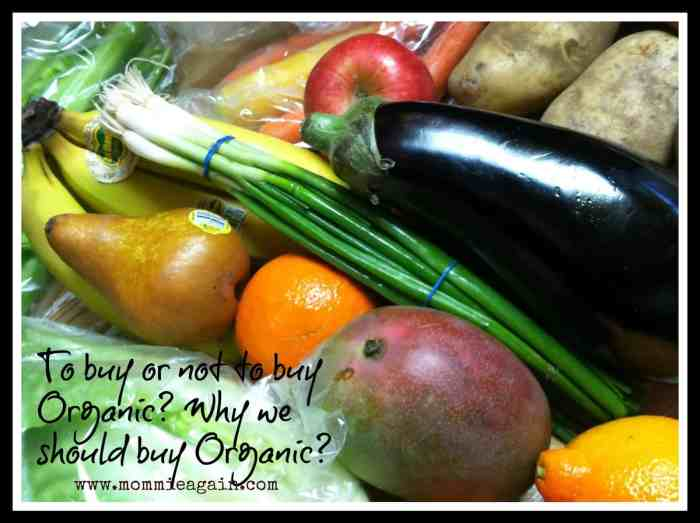 Eating Mindfully - To buy or not to buy Organic Produce