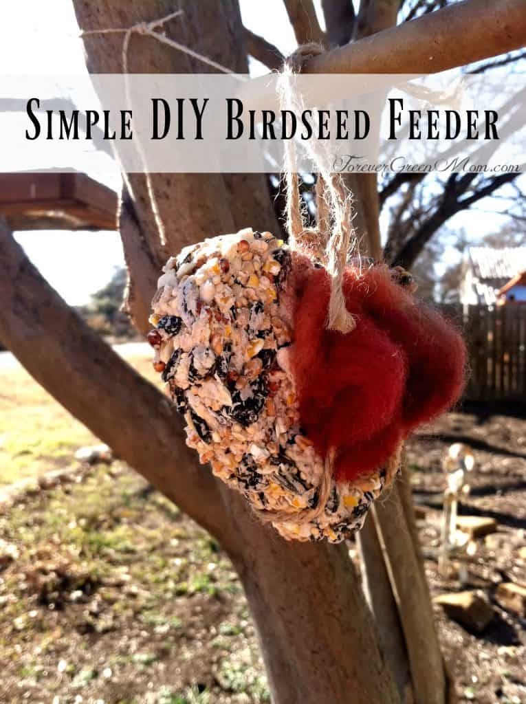 Simple DIY Birdseed Feeders