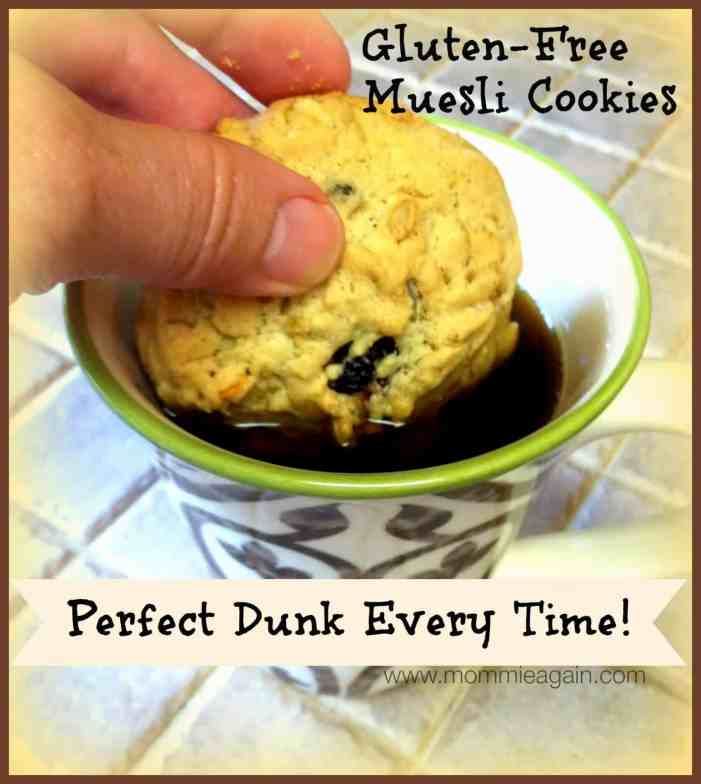 Gluten Free Muesli Cookies - Perfect for Dunking!