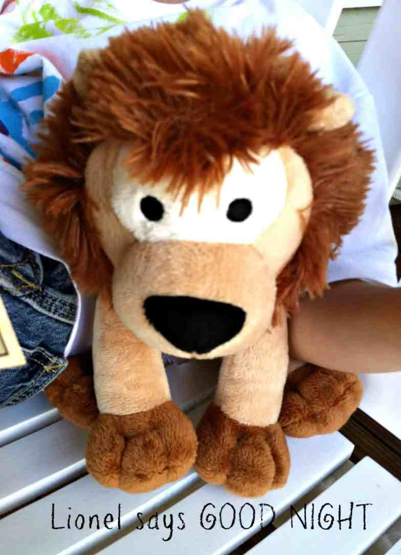 Sleep Better with a Companion from Dream Team Pets