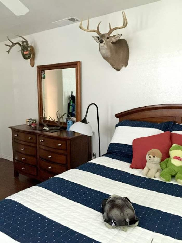 A Hunter's Dream - My 6-year old's Bedroom Makeover