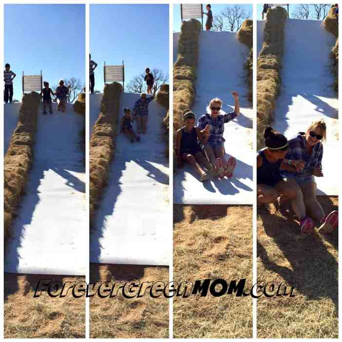 lone-star-family-farm-slide