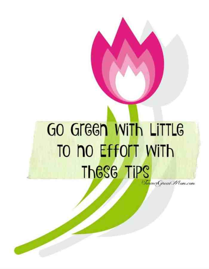 Go Green with Little to No Effort