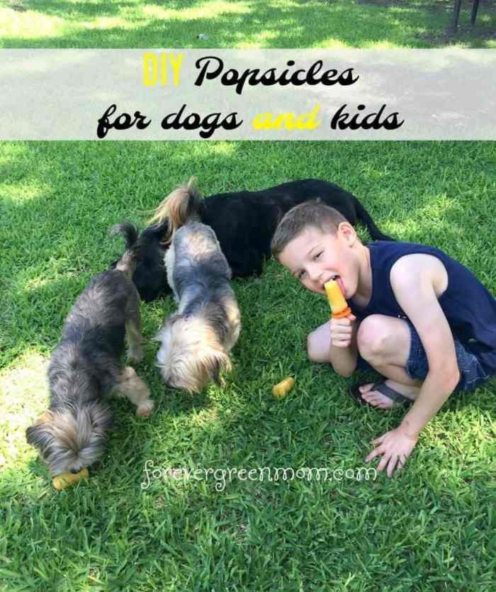 Tropical-Flavored Dog AND Kid Popsicles