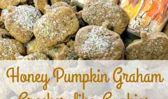 Honey Pumpkin Graham Cracker-like-Cookies