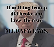 If nothing Trump did broke any laws, then we NEED NEW LAWS.