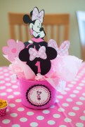 MinnieMouse_(34_of_37)