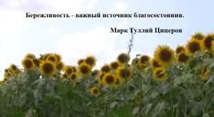 Как сэкономить семейный бюджет – реальные советы (бережливость) - http://forex-recipe.ru