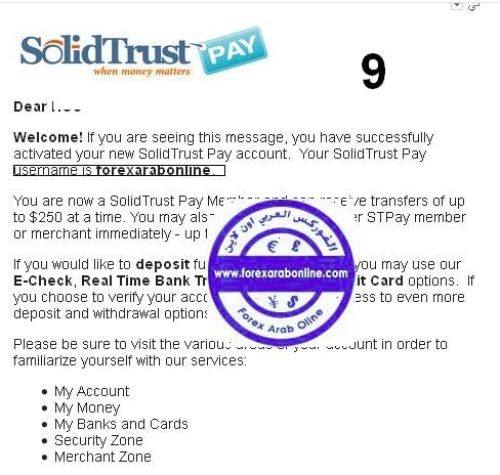 solid trust pay