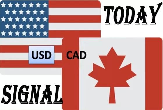 forex trading signals-free forex signals-usdcad signals