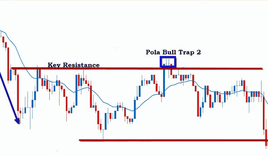 Bull Trap Patterns