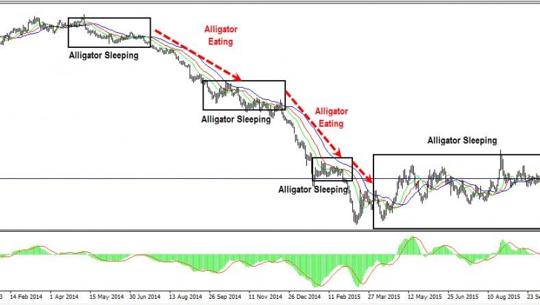alligator mt4 indicator
