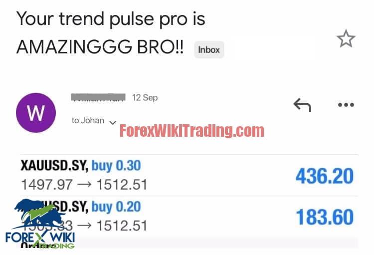 Trend Pulse Pro V2 Review Testimonial